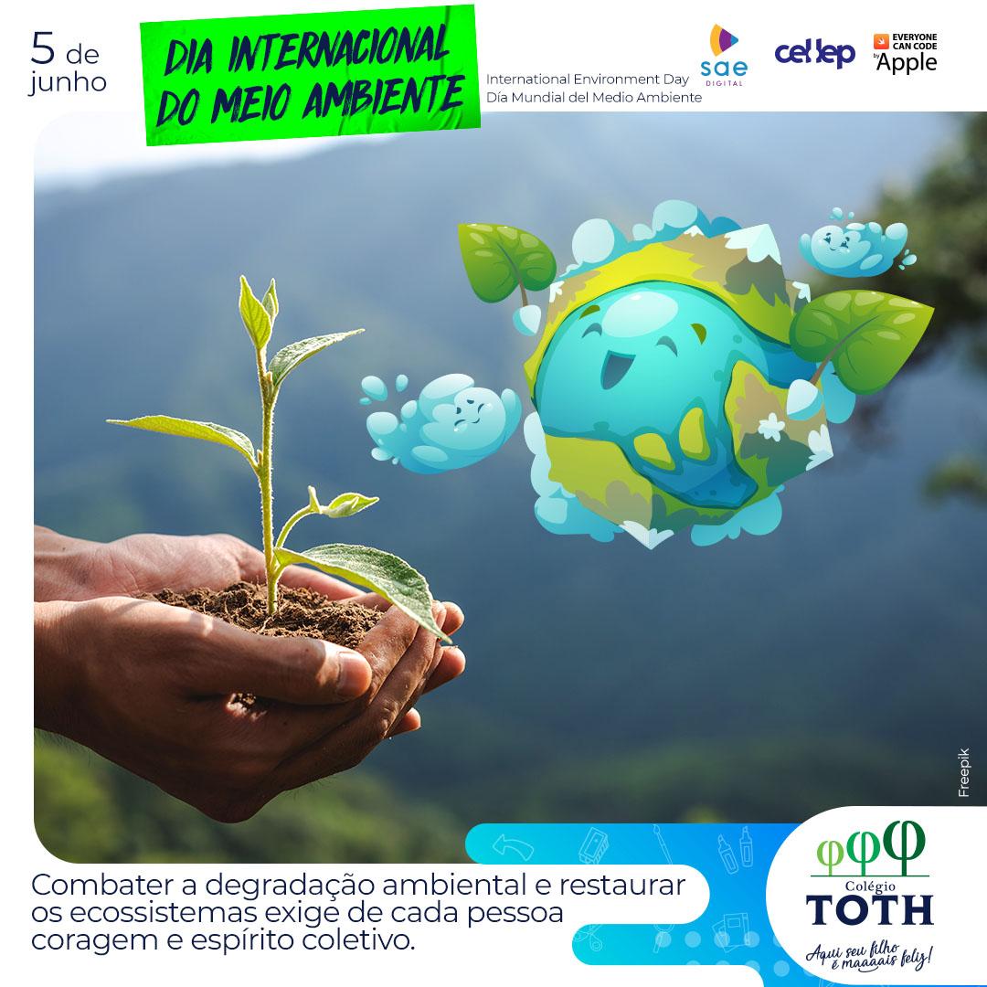05-Colegio-Toth-Meio-Ambiente_Timeline